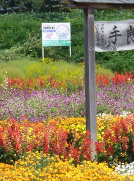 手良は花がいっぱい!手良坂花壇とサンプレイ看板